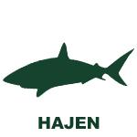Hajen, nivå 5 i simskolan